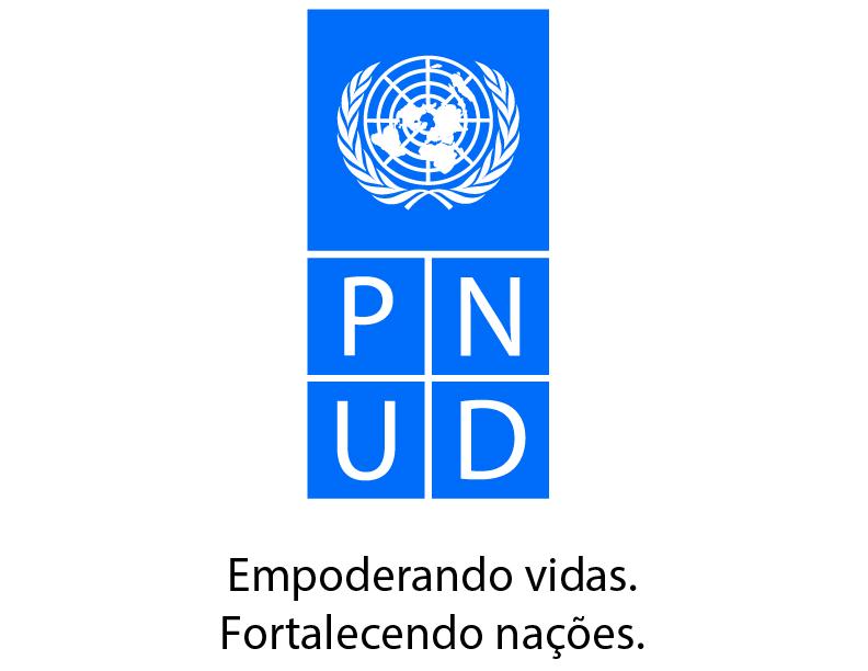 Logo PNUD REMS-01